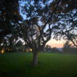 iluminacion jardin 2 150x150 - Iluminación jardin